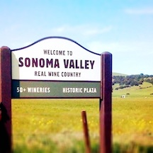 "As opposed to the ""fake"" wine country…"