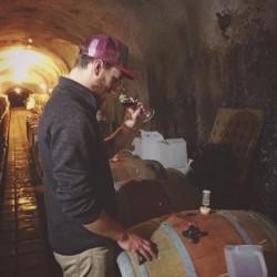 Cellar Checkup